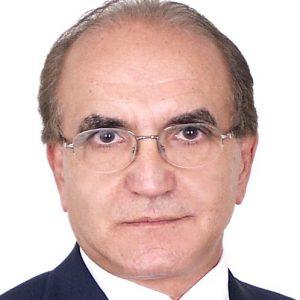 José Luiz Bichuetti